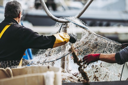 Decreased turnover in the Belgian sea fishing industry
