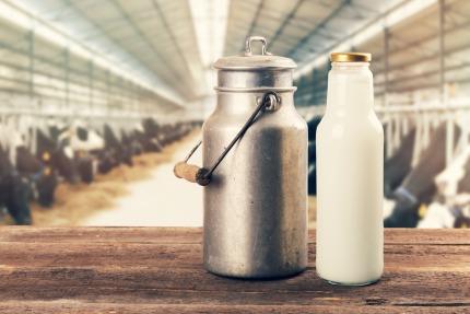Milcherzeugnisse im Juni 2018
