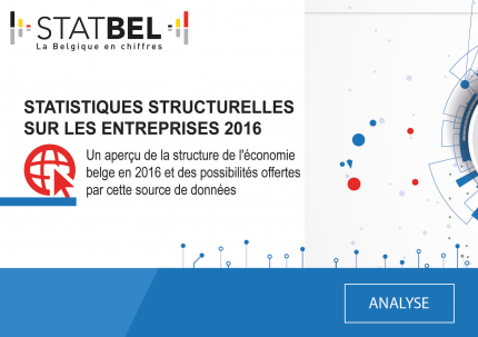 Statistiques structurelles sur les entreprises 2016